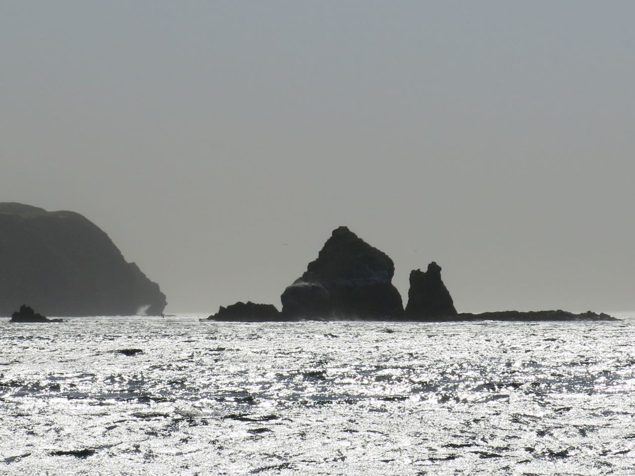 Go to Cat Rock on Anacapa Island with Capt. Dan Ryder and Sai Channel Islands