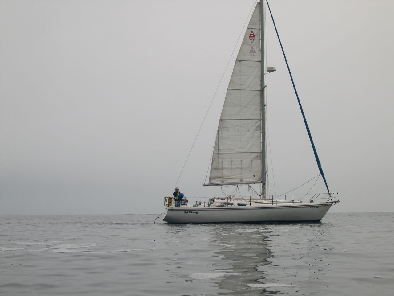 Go to Painted Cave with Capt. Dan Ryder and Sail Channel Islands